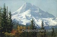 trn001473 - Mount Hood, Portland, Oregon, OR USA Trains, Railroads Postcard Post Card Old Vintage Antique