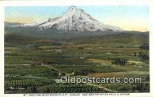trn001477 - Mt Hood And Hood River Valley, Oregon, OR USA Trains, Railroads Postcard Post Card Old Vintage Antique