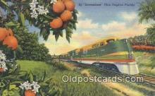 trn001498 - Streamliner, Florida, FL USA Trains, Railroads Postcard Post Card Old Vintage Antique