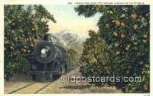 trn001555 - Orange Groves, California, CA USA Trains, Railroads Postcard Post Card Old Vintage Antique