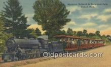 trn001584 - Miniature Railroad Zoological Park, Detroit, Michigan, MI USA Trains, Railroads Postcard Post Card Old Vintage Antique