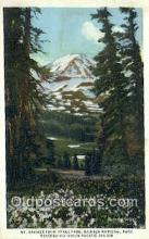 trn001781 - Mount Rainier From Spray Park, Washington, WA USA Trains, Railroads Postcard Post Card Old Vintage Antique