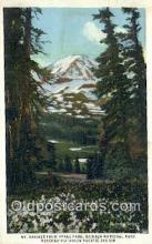 trn001781 - Mount Rainier From Spray Park, Washington, WA USA Trains, Railroads Postcard Post Card Old Vintage Antique
