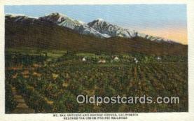 trn001835 - UPRR Mt San Antonio and Orange Groves, California, CA USA  Trains, Railroads Postcard Post Card Old Vintage Antique