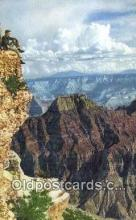 trn001923 - Grand Canyon, Arizona, AZ USA Trains, Railroads Postcard Post Card Old Vintage Antique