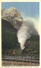trn001955 - Mt Stephen Train Trains, Railroads Postcard Post Card Old Vintage Antique
