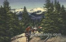 trn002191 - Colorado Rockies, Colorado, CO USA Trains, Railroads Postcard Post Card Old Vintage Antique