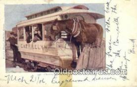 try101192 - Cherreylun Horse Car Denver, CO, USA