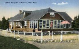 twn002021 - Dionne Quintuplets Postcard Postcards