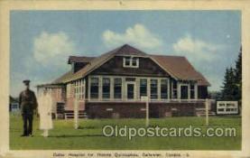 twn002029 - Dionne Quintuplets Postcard Postcards
