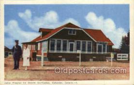 twn002033 - Dionne Quintuplets Postcard Postcards