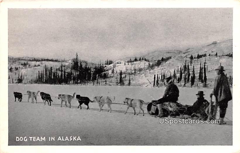 Dog Team - Misc, Alaska AK Postcard