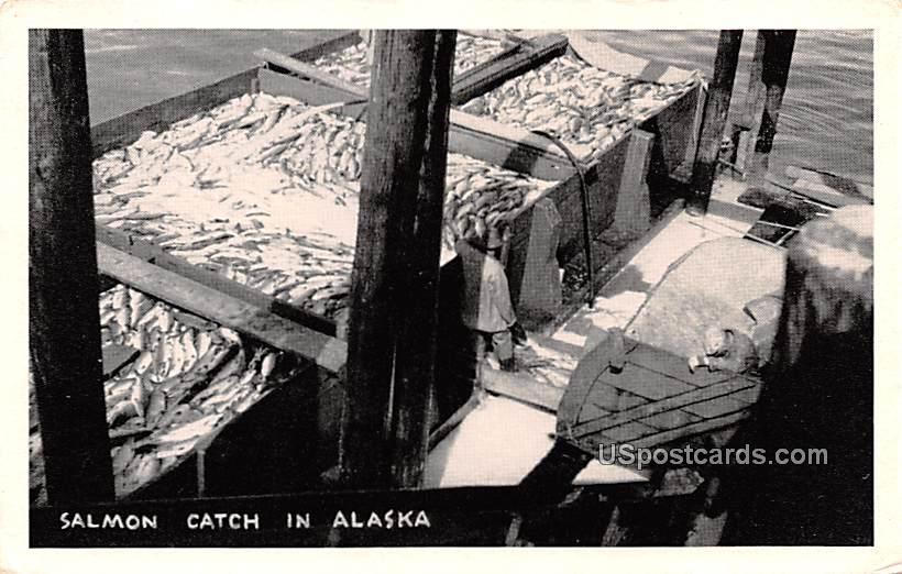 Salmon Catch - Misc, Alaska AK Postcard