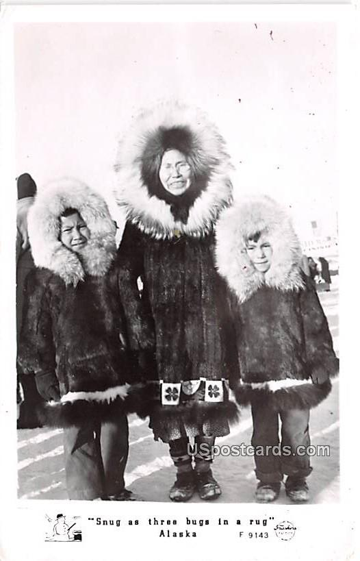 Snug as three bugs in a rug - Misc, Alaska AK Postcard
