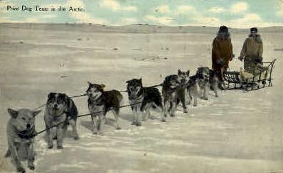 Prize Dog Team - Misc, Alaska AK Postcard