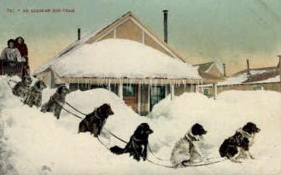 An Alasakan Dog Team - Misc, Alaska AK Postcard