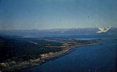 Where people like to live - Homer, Alaska AK Postcard