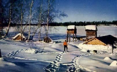 Trapper's Camp - Misc, Alaska AK Postcard