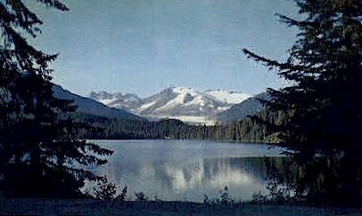The forty-ninth state - Auke Lake, Alaska AK Postcard