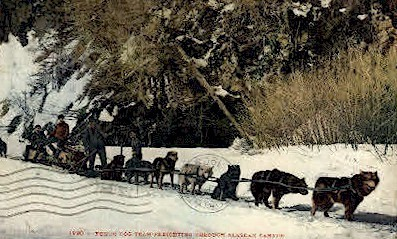 Yukon Dog Team - Misc, Alaska AK Postcard