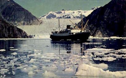 Spectacular Glacier-lined Fjord - Misc, Alaska AK Postcard