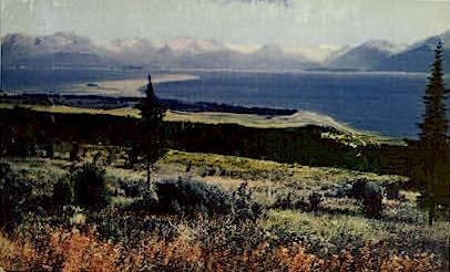 Kenai Peninsula - Homer, Alaska AK Postcard