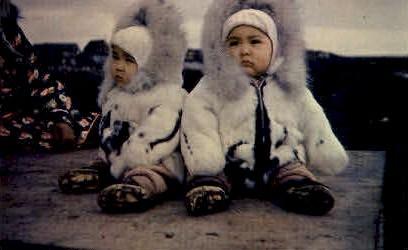 Twins - Misc, Alaska AK Postcard