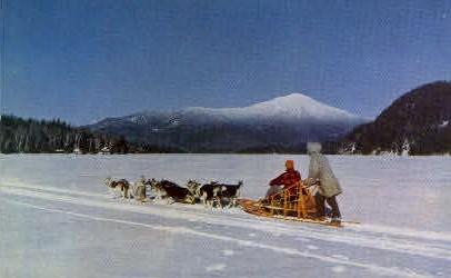 Husky Dog Team - Misc, Alaska AK Postcard