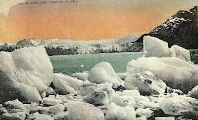 Muir Glacier and Icebergs - Alaska AK Postcard