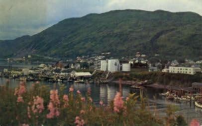 Kodiak, Alaska, AK Postcard
