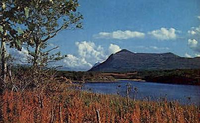 Beautiful Autumn - Kodiak, Alaska AK Postcard
