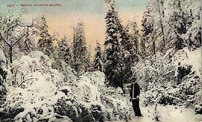 Winter Scene - Misc, Alaska AK Postcard