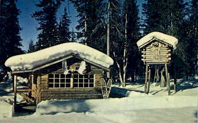 The forty-ninth state - Misc, Alaska AK Postcard