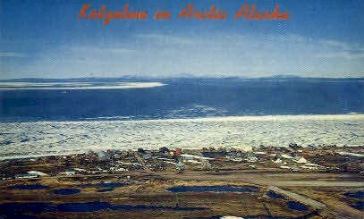 Arctic Area - Kotzebue, Alaska AK Postcard