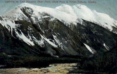 East Skagaway River from White  - Skagway River, Alaska AK Postcard
