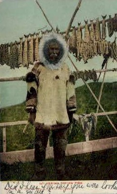 Eskimo Drying Fish - Misc, Alaska AK Postcard