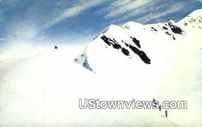 Skiing - Misc, Alaska AK Postcard