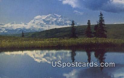 Camp Denali - McKinley Park, Alaska AK Postcard