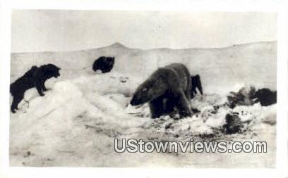 Misc, Alaska,;   Misc, AK Postcard