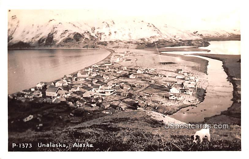 Birds Eye View - Unalaska Postcards, Alaska AK Postcard