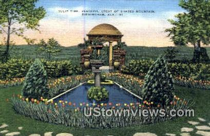Tulip Time, Vestavia - Birmingham, Alabama AL Postcard