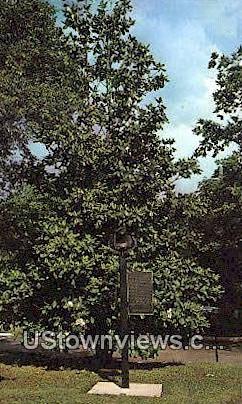 Arlington Ante Bellum Home - Birmingham, Alabama AL Postcard