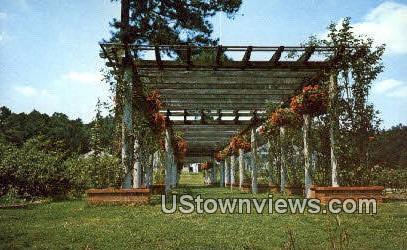 Botanical Rose Garden - Birmingham, Alabama AL Postcard