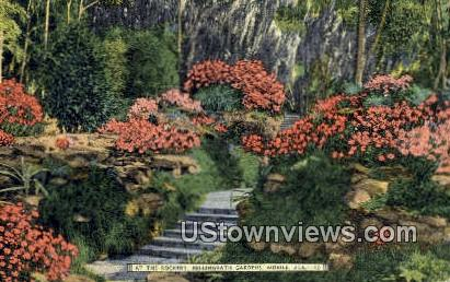 Rockery, Bellingrath Gardens - Mobile, Alabama AL Postcard