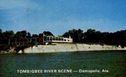 Tombigbee River  - Demopolis, Alabama AL Postcard