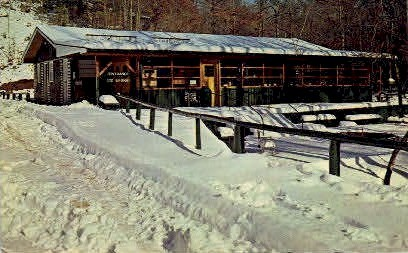 Natural Bridge - Alabama AL Postcard