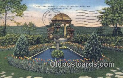 Tulip Time, Vestavia, Shades Mountain - Birmingham, Alabama AL Postcard