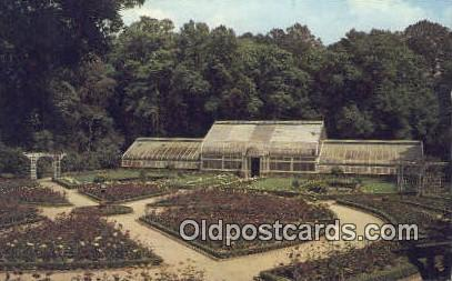 Rose Garden, Bellingrath Garden - Mobile, Alabama AL Postcard