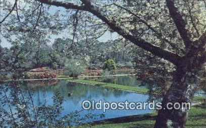 Fish Hatchery Ponds - Mobile, Alabama AL Postcard