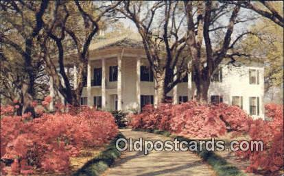Mitchell Home - Mobile, Alabama AL Postcard